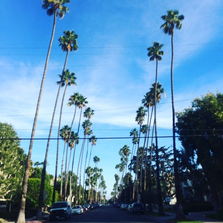 I moved back to CA this year. And I finally live in Los Angeles.